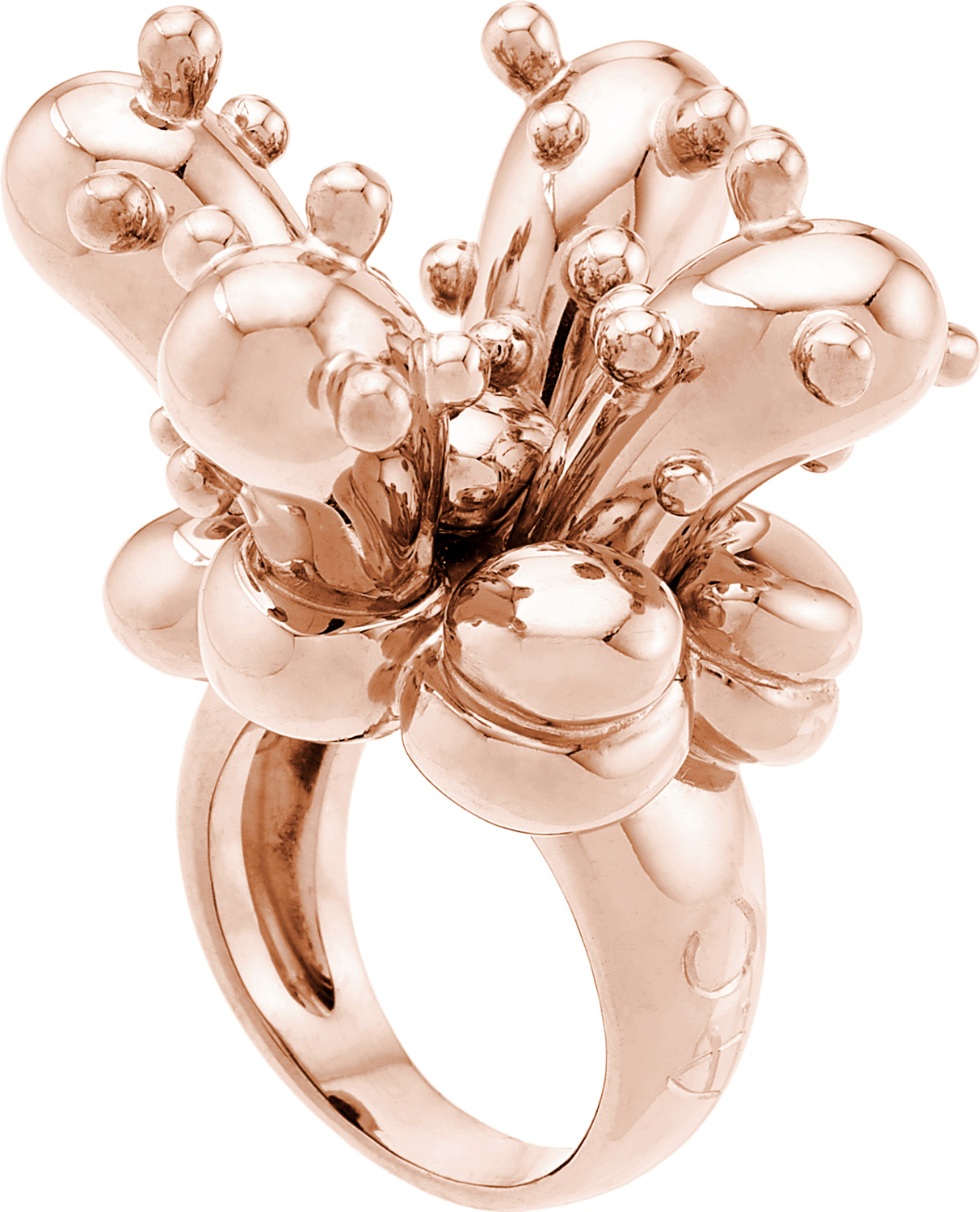 AARON CURRY for CADA<br><br>CACTUS Ring
